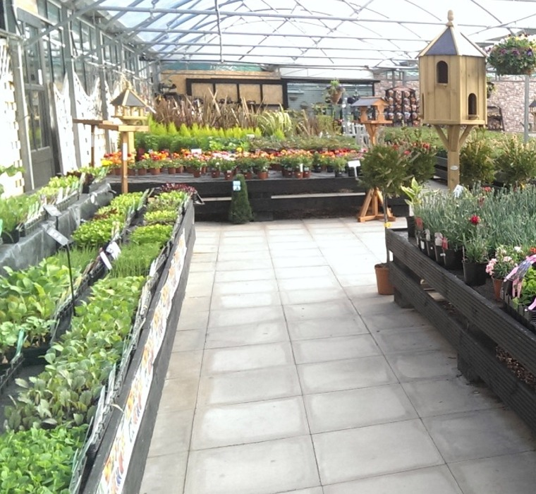 Prepossessing Tyddyn Sachau Garden Centre And Cafe With Outstanding Garden Centre  With Captivating Bethnal Green Gardens Also Radisson On Flagstaff Gardens In Addition Gardening Services Warrington And Crane Garden As Well As Garden Centre Harrow Additionally Garden Boxes For Sale From Tyddynsachaucouk With   Outstanding Tyddyn Sachau Garden Centre And Cafe With Captivating Garden Centre  And Prepossessing Bethnal Green Gardens Also Radisson On Flagstaff Gardens In Addition Gardening Services Warrington From Tyddynsachaucouk
